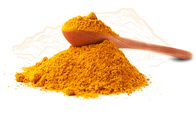 Ingredient Icon Curry Powder