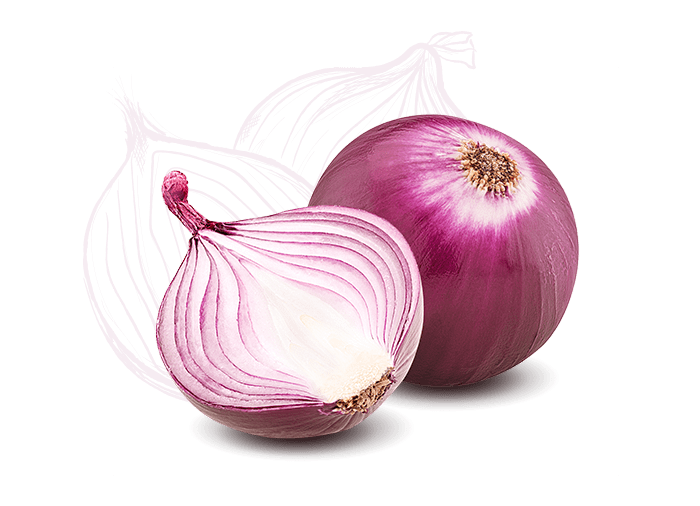 Ingredient Icon Onion